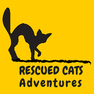 Rescued Cats Adventure Series